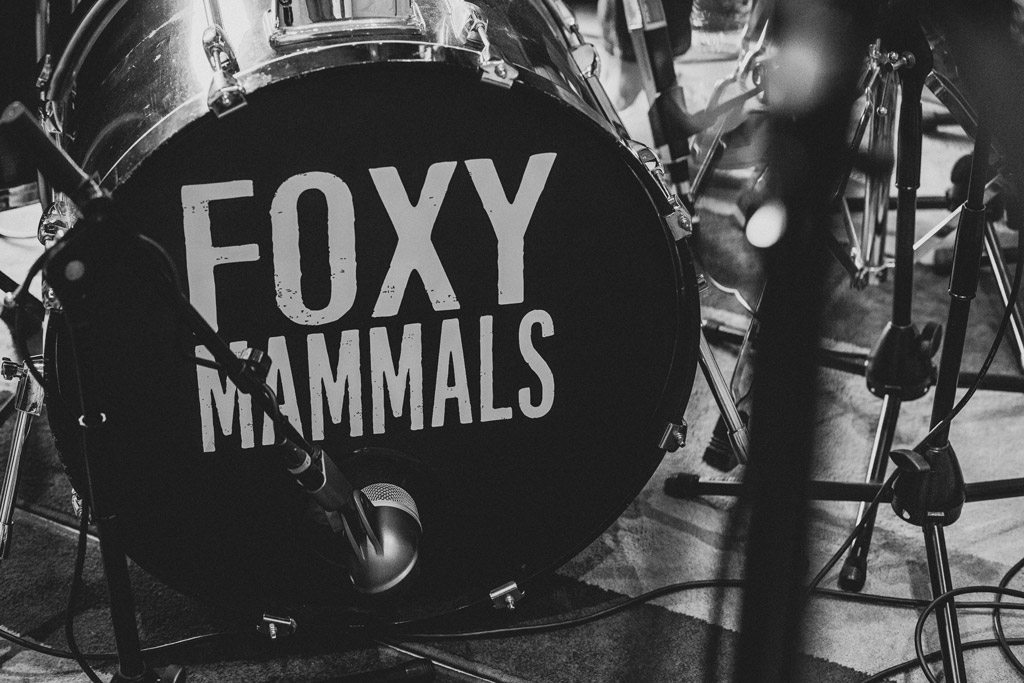 The foxy Mammals